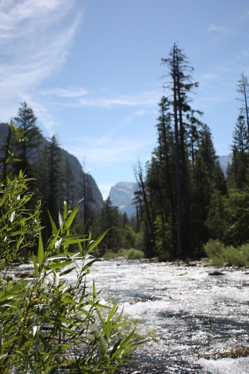 Cedar Grove in Kings Canyon